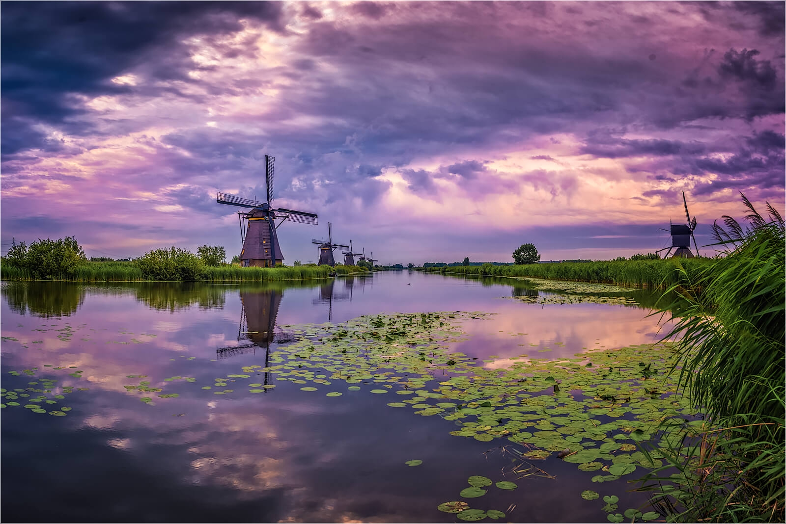 Wandbild Windmühlen in Kinderdijk