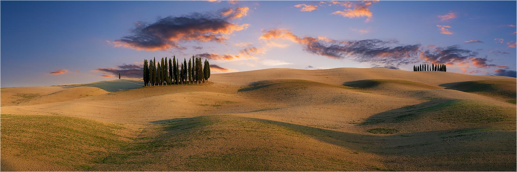 Panoramafoto Zypressenhain Toskana Italien