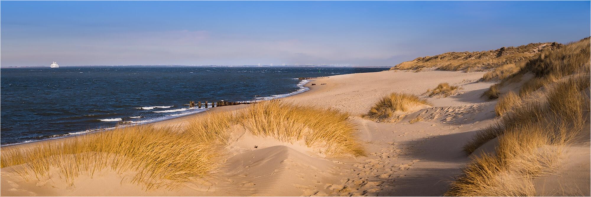 Panoramabild Dünen der Nordsee auf Sylt
