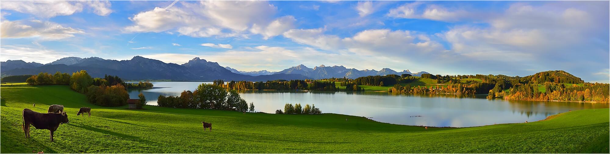 Panoramabild Morgens am Forggensee im Allgäu
